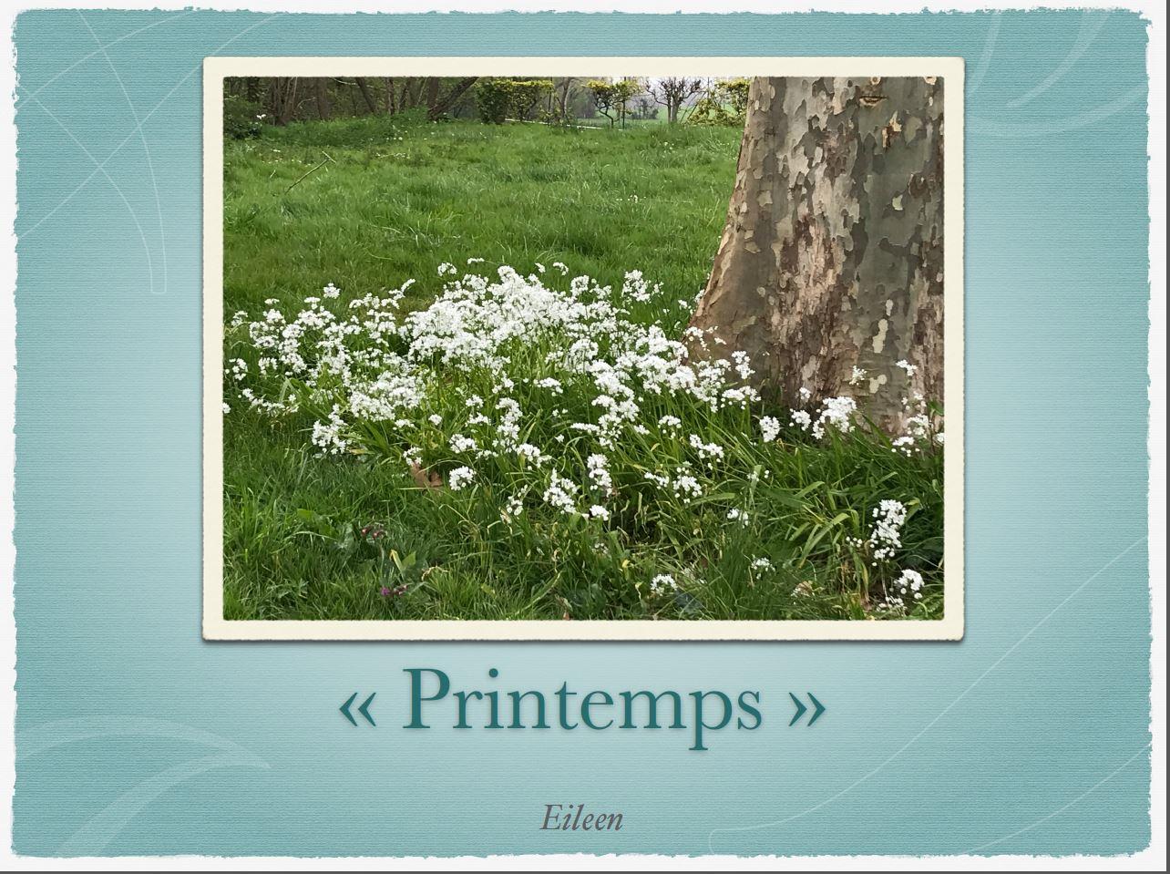 Printemps13
